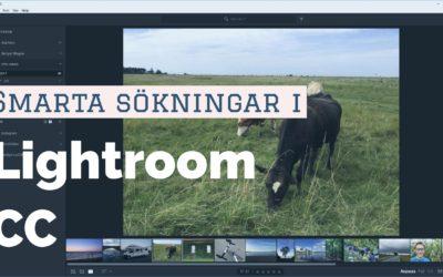 Smarta sökningar i Lightroom CC