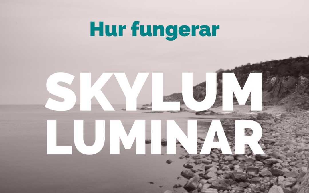 Hur fungerar Skylum Luminar