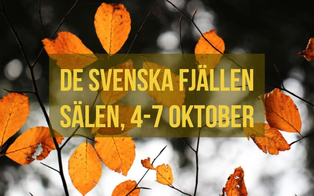 Sälen, de Svenska fjällen